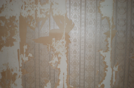 Pembroke Pines Wall Paper Removal Company